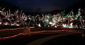 Celebration of Lights at Fort Zumwalt Park in O'Fallon, MO