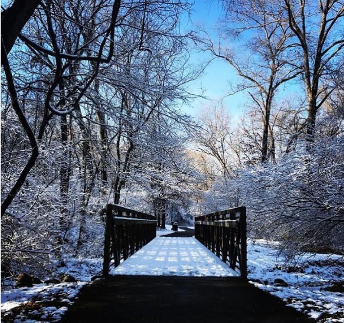 Bluebird Park Ellisville, MO
