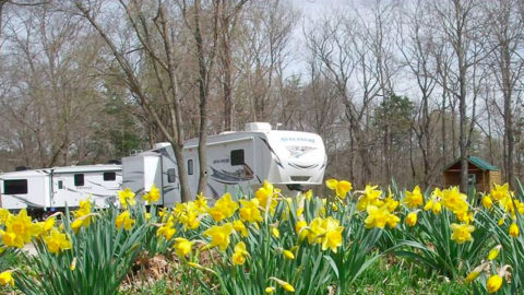 camping at Pin Oak Creek RV Park