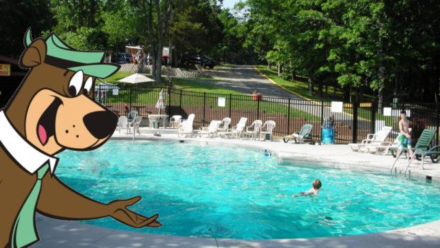 jellystone park resort pool photo
