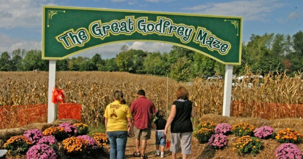 The Great Godfrey Maze Labor Day Weekend